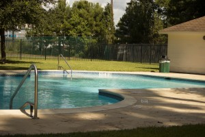Nickaburr Pool 2