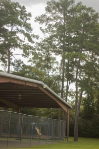 Oak Bluff Pavilion 4
